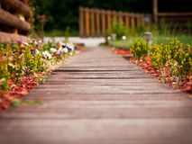Wooden pathway through garden. Pathway made of wooden planks through beautiful garden with colorful flowers Stock Images