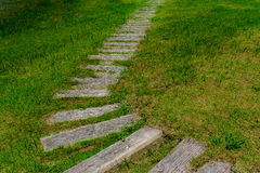 Wooden Pathway in garden Royalty Free Stock Photography