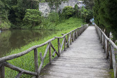 Wooden pathway beside the lake Royalty Free Stock Photo