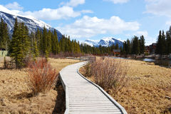 Wooden Pathway in Mountains. Raised wooden pathway in rocky mountains along a river Royalty Free Stock Photo