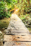 Wooden pathway over waterfall in forest Royalty Free Stock Images