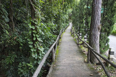 Wooden pathway beside the road Royalty Free Stock Images
