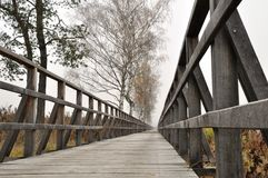 Wooden pathway straight forward Royalty Free Stock Photography