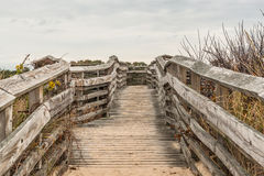 Wooden Pathway to Beach at First Landing State Park. In Virginia Beach, Virginia Royalty Free Stock Photo