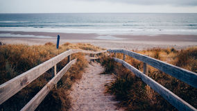 Wooden Pathway to Beach Shore Royalty Free Stock Image