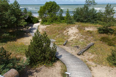 Wooden pathway to sea Royalty Free Stock Image