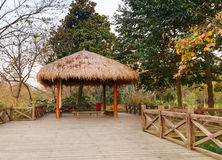 Wooden pathway and traditional Chinese gazebo Royalty Free Stock Image