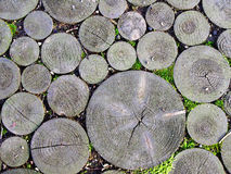 Wooden pavement. A pavement of wooden blocks in National park Gauya,  Latvia Stock Image