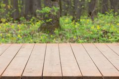 Wooden pavement in a park Stock Images