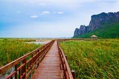 Wooden pavilion and wooden bridge in lotus lake, Samroiyod natio Royalty Free Stock Photos