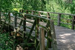 Wooden pedestrian bridge with wild nature royalty free stock image