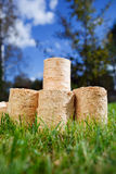 Wooden pellets on green grass background Royalty Free Stock Photo