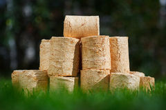 Wooden pellets on green grass background Royalty Free Stock Photography