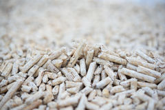 Wooden pellets Stock Photography