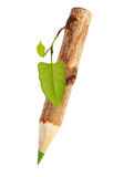 Wooden pencil with leaf Royalty Free Stock Photography