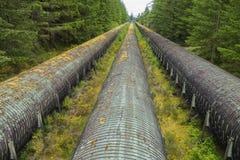 Free Wooden Penstock BC Hydro Water Intake Pipes At John Hart Power Generating Station Royalty Free Stock Photo - 125182285