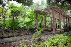 Wooden Pergola in park. Wooden Pergola with footpath through in park Stock Image
