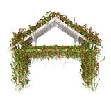 Wooden pergola with roses Royalty Free Stock Photo