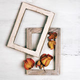 Wooden photo frames with dry roses Royalty Free Stock Photos