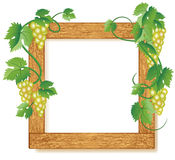 Wooden photo frames with grapes Stock Photography