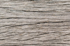 Wooden. This photo was taken, when I was thinking about textures Royalty Free Stock Photos