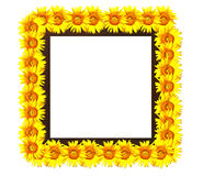 Wooden photoframe decorated with sunflower Royalty Free Stock Photos