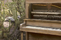 Wooden Piano in Desert Royalty Free Stock Photo