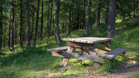 Wooden picinic table in the forest, no people - 4Kvideo. Peaceful landscape with Wooden picinic table in the forest, no people -4Kvideo stock footage