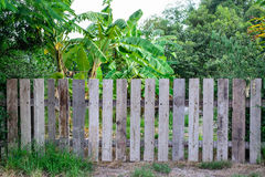 Wooden Picket fence garden Stock Photography