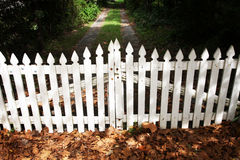 Wooden picket fence gate. Traditional white picket fence gate closed Royalty Free Stock Photography