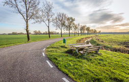 Wooden picnic set on the roadside along a country road. Picturesque landscape with an asphalt road through a rural area with a row of bare trees. In the side of Stock Image