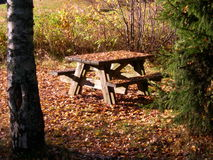Wooden Picnic Table. Picnic table in a woodland clearing, the ground and table are covered with fallen golden autumn leaves Royalty Free Stock Photo