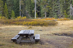 Wooden Picnic Table in Autumn Foliage Stock Photos