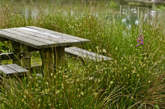 Wooden picnic table with benches in a countryside , UK Royalty Free Stock Photo