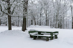 Wooden picnic table Stock Images