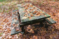Wooden picnic table covered with autumn leaves. Wooden picnic table and bench covered with autumn, fall leaves on sunny day Stock Photos