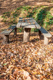 Wooden picnic table Stock Photo