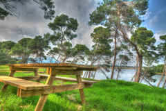 Wooden picnic table in a pinewood in hdr Royalty Free Stock Images