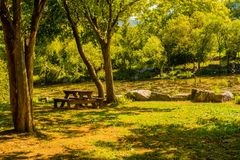 Wooden picnic table under shade tree. Wooden picnic table sitting under shade tree in in park in front of small lake in South Korea Stock Images
