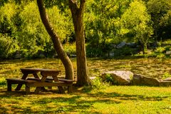 Wooden picnic table under shade tree. Wooden picnic table sitting under shade tree in in park in front of small lake in South Korea Royalty Free Stock Photos