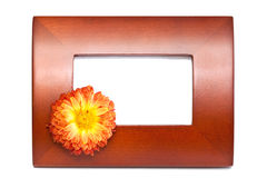 Wooden picture frame. Empty wooden picture frame with flower on white background Stock Photos