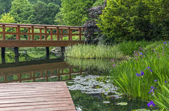 Wooden pier and beautiful plants in a japanese garden Stock Photo