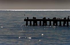 Wooden pier on the Black Sea Stock Photos