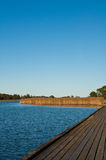Wooden pier and common reed at the baltic sea Royalty Free Stock Photo