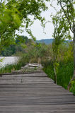 Wooden pier on the Danube 2 Stock Image