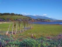 Wooden pier at dry shore of Liptovska Mara Lake royalty free stock photography