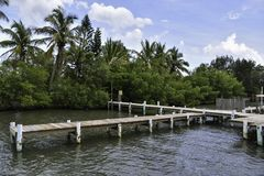 Wooden pier on a florida waterway stock image