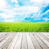 Wooden pier with grass field and blue sky background. Wooden plank with grass field and blue sky background Stock Photo