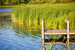 Wooden pier on a lake. Photo of a wooden pier on a lake Stock Image