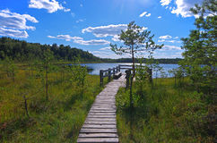 Wooden pier on lake Stock Image